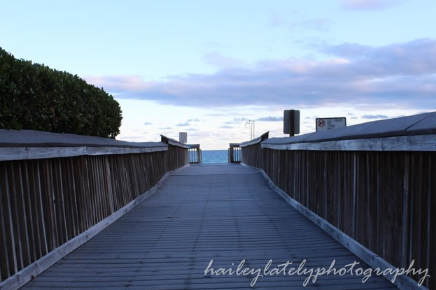 boardwalk blog