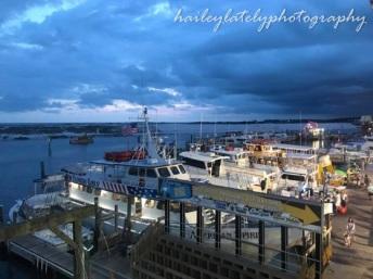 harborwalk from ajs blog