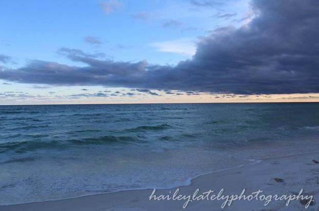 shoreline blog